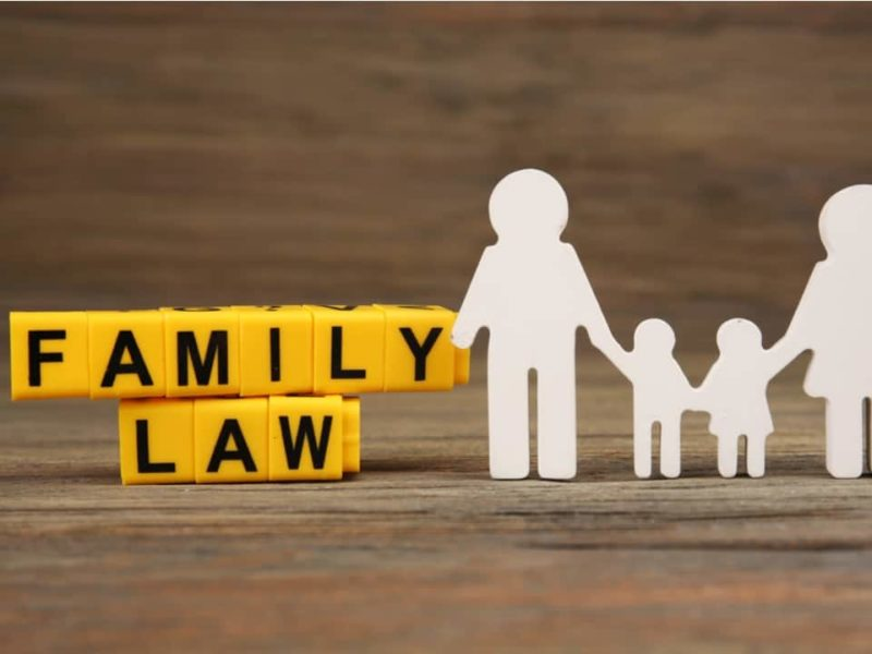 A Brief Guide to Understanding the Purpose of Family Law Lawyers